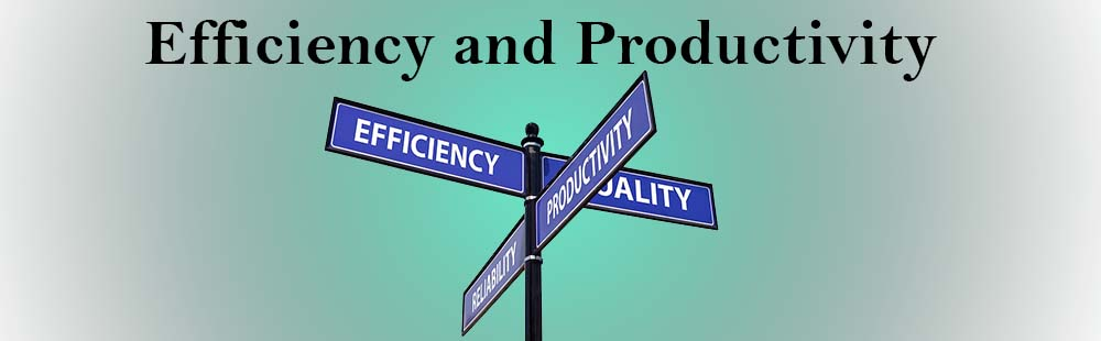 Efficiency and Productivity