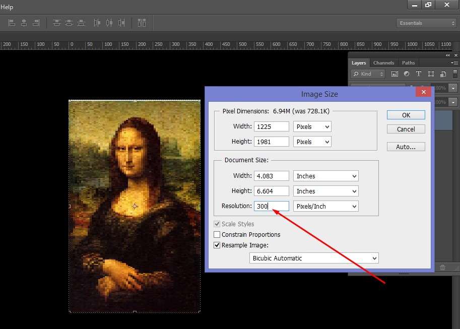 Fix the Size of Monalisa Image