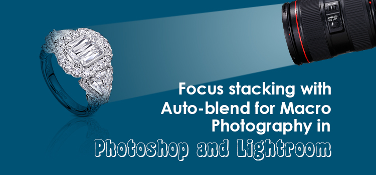 Focus stacking with Auto-blend for Macro Photography in Photoshop and Lightroom